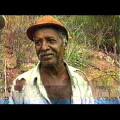 Jorge Luiz destaca lagarto no Sertão de Alagoas