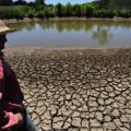 Prorrogação do Bolsa Estiagem beneficia 24 mil agricultores em Alagoas