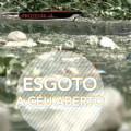CQC volta a Alagoas e fala sobre poluição no Rio Coruripe