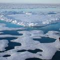 Oceano Ártico não terá mais gelo no verão de 2050, dizem cientistas