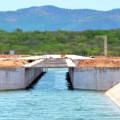 Governo vai plantar 10 mil mudas de espécies nativas ao longo do Canal do Sertão