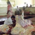 Matadouro de Palmeira dos Índios deve voltar a funcionar