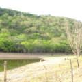 Apenas 7,5% da Caatinga está protegida