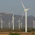 """Líderes empresariais acreditam que economia precisa """"descarbonizar"""""""