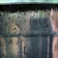 Casos de dengue têm redução superior a 80% em Alagoas