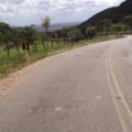 Agricultor é achado morto em trecho da AL 145 em Delmiro Gouveia