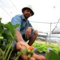 Ações da Seagri contribuem com o desenvolvimento rural em Alagoas