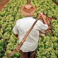 Governo alerta produtores do Sertão à aderirem ao Cadastro Ambiental Rural (CAR)