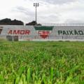 Diretoria do CSE divulga valor dos ingressos para jogo contra o CSA no Juca Sampaio