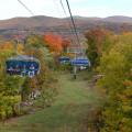 O olhar de um alagoano: Outono dá vida e cor à natureza nos Estados Unidos