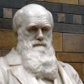 Dia de Darwin será comemorado com palestras na Ufal