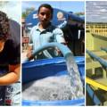 Governo promete poços, carros-pipas e adutora para enfrentar seca no Agreste e Sertão