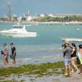 Média de ocupação hoteleira em Alagoas deve chegar a 92% neste feriadão