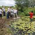 Agricultores recebem 40 mil alevinos em Olho d'Água das Flores