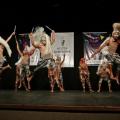 Secretaria de Cultura lança edital da 15ª Mostra Alagoana de Dança