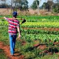 Prefeitura de Palmeira lança operação Mais Água Agricultor nesta segunda (2)