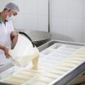 Crise na produção de leite em Alagoas é debatido por políticos em Maceió