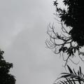 Chuvas desta segunda-feira estão associadas às altas temperaturas