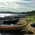 Seis pessoas sofrem ataques de piranhas no rio São Francisco em Pão de Açúcar
