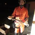 Bombeiros resgatam Jiboia em rodoviária de Santana do Ipanema