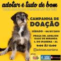 Santana do Ipanema tem feira de adoção de animais neste sábado (6)
