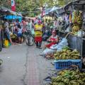 Alunos de Nutrição da Ufal constatam que orgânicos são mais baratos em feiras
