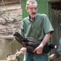 Ave extinta em seu habitat retornará para as mata de Alagoas essa semana
