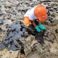 Capes divulga projetos selecionados para pesquisa sobre óleo em praias