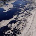Exército vai reforçar ações em praias atingidas por óleo, diz Mourão