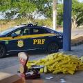 Mulher é presa transportando mais de 200 kg de maconha em ônibus