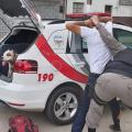 Homem é preso ao ser flagrado arrastando cachorro nas ruas de Maceió