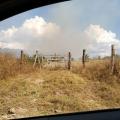 VÍDEO: Morador registra incêndio em vegetação em Carneiros
