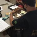 PF deflagra operação que investiga fraude em seguro-desemprego em Alagoas