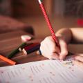 Artigo: Educar é um ato de humanizar a si mesmo e o outro