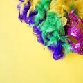 AMA faz levantamento sobre carnaval em cidades de Alagoas