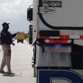 PRF de Alagoas recupera caminhão roubado que transportava carnes em Águas Bela (PE)