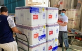 AL recebe mais 81.550 doses de vacinas contra a Covid-19