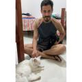 Santana: Após ajuda de vizinhos, designer gráfico acha gata que estava perdida