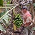 Por meio do apoio da Emater, agricultora aumenta faturamento mensal em 50%