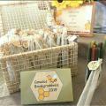 IFAL pede patente de canudo produzido com cera de abelha do Sertão