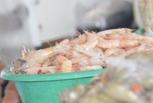 Pescados representam uma tradição secular cristã, durante a Semana Santa; porém, requerem certos cuidados. (Foto: Carla Cleto)