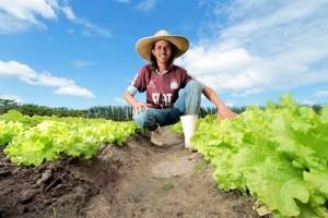 Recursos possibilitarão a permanência das famílias no campo e o desenvolvimento da agricultura familiar, de acordo com o diretor-presidente do Iteral, Jaime Silva (Foto: Divulgação)