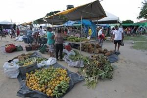 Feira faz parte da programação de aniversário do município (Foto: Secom)