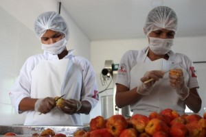 Em Delmiro Gouveia, cerca de 50 produtores rurais ligados a associações e cooperativas foram capacitados (Foto: Ascom/Desenvolve)