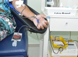 Hemoal apela para que alagoanos se sensibilizem e se candidatem à doação de sangue (Foto: Carla Cleto / Agência Alagoas)